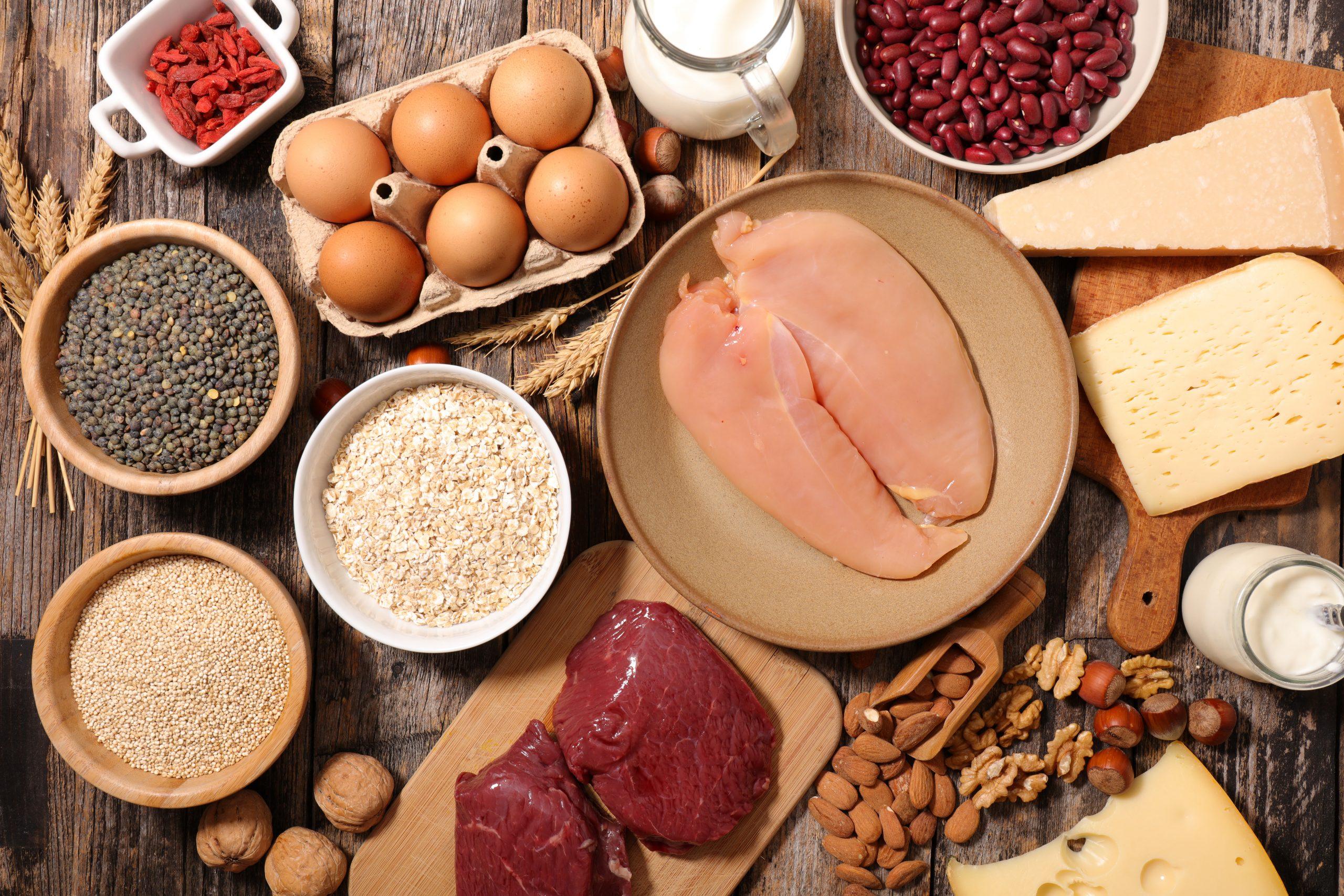 Les protéines : leurs rôles et notre besoin
