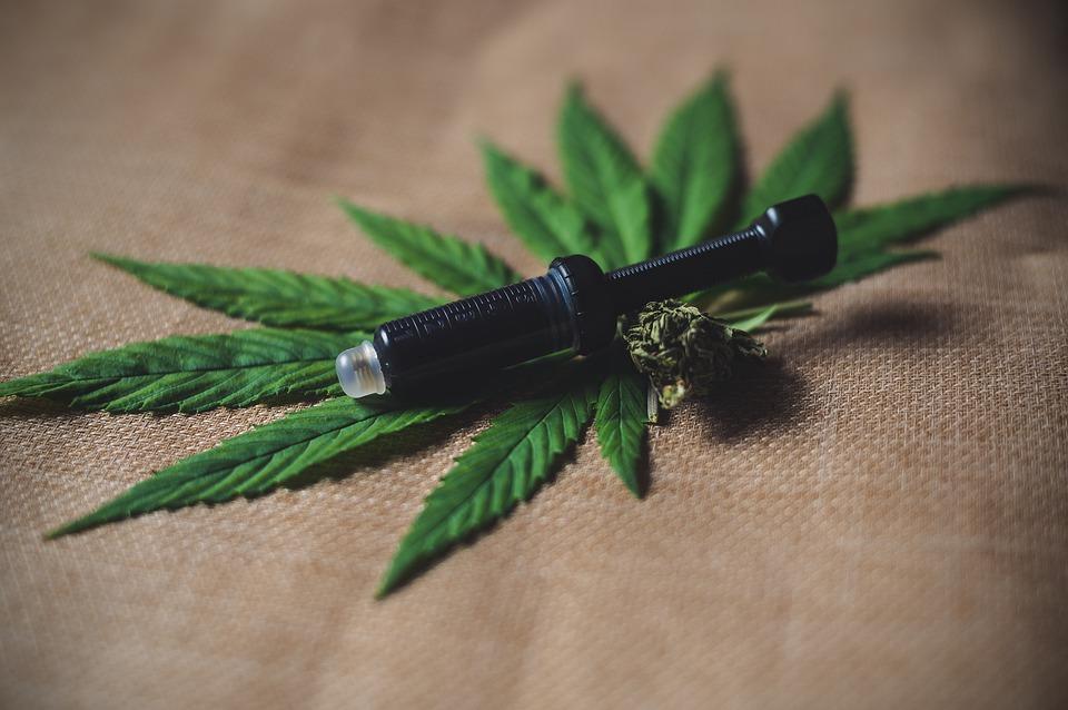 Le CBD: un cannabis légal prometteur pour la santé