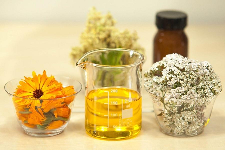 Beauté : deux choses essentielles à savoir sur l'huile de jojoba !